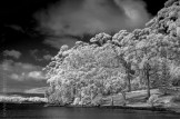 portarthur-tasmania-historic-site-infrared-24129
